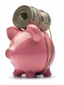 Piggy Bank Monkeyroll Image