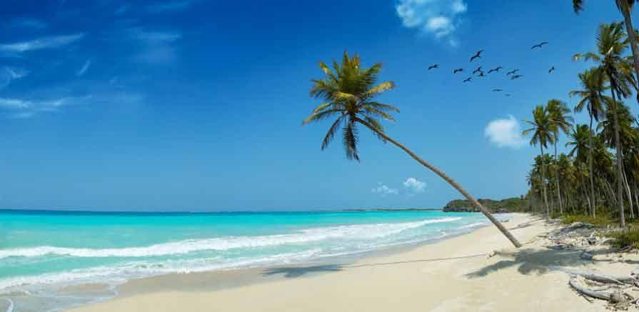 Caribbean Beach Photo