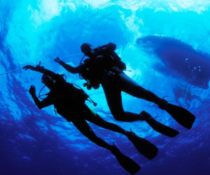 Scuba Diver Instructors can Find Good Work in the Cruise Ship Industry