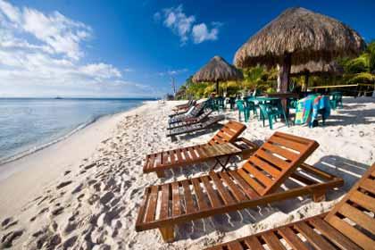 Beach Resort Lounge Chairs on Beach Photo