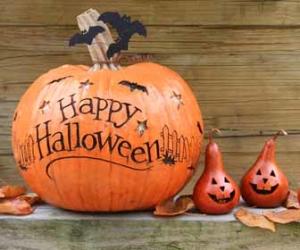 Happy Halloween Written On Pumpkins Picture