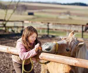 girl-feeding-horse-guest-ranch-dp-300x250