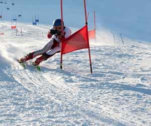 Ski Racer Running Gates