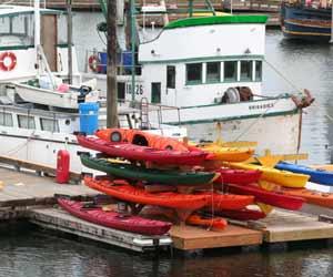 Sea Kayacking Tours in Seward Alaska