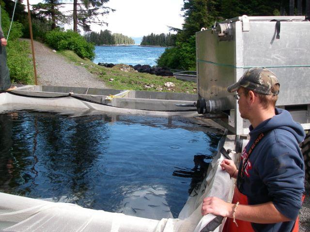 Fish Farm Rearing Pool